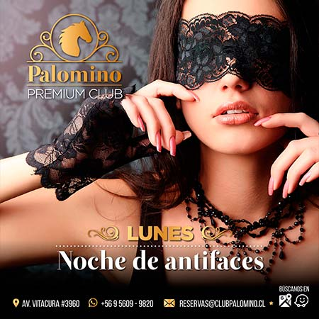 palomino-shows-lunes